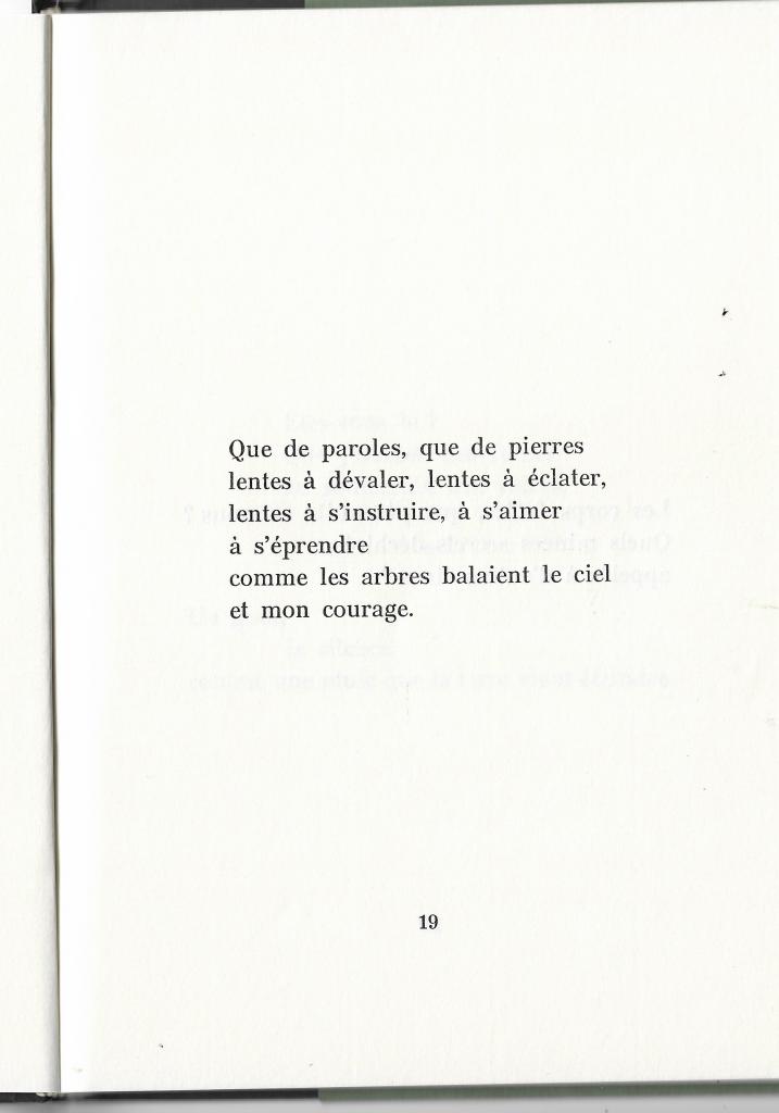 "Emmanuel Dall'Aglio in ""Demeure d'étranger"", Cheyne éditeur, 1994"
